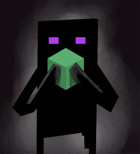 Enderman Don't Pickup Blocks